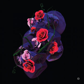 Hyroglifics - Stone Rose EP...