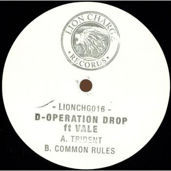 D-Operation Drop ft. Vale...